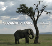Coffee Table Book - Africa Endangered by Suzanne Vlamis