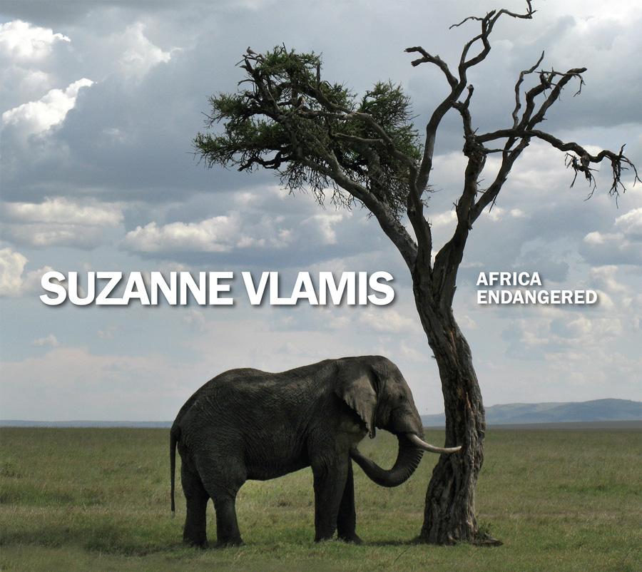 Suzanne-Vlamis-Book-Cover-web